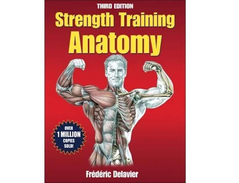 Strength training anatomy review