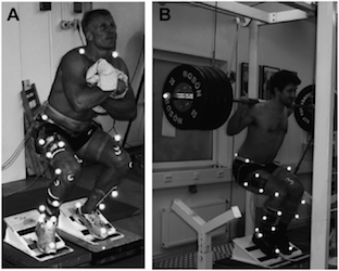 Science has tried to assess the differences in free weight vs smith machine training