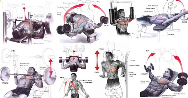Completing a variety of exercises ensure optimal and uniform muscle growth