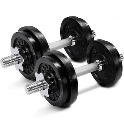A pair of yes4all cast iron adjustable dumbbells are great for upper body workouts