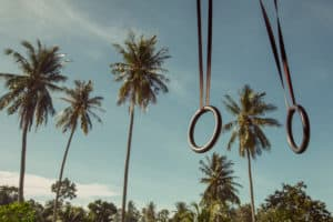 Gymnastic rings A-Z: Rings hanging against palm tree background